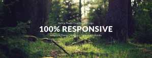 100 responsive design
