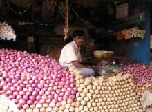 Ein indischer Marktverkäufer hinter einem Berg von Zwiebeln