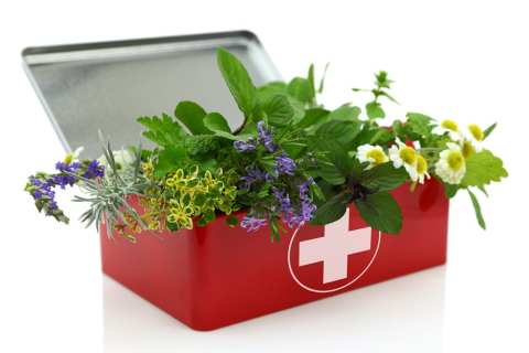 Permalink to: 7 Essential Ingredients for Your Portable Natural First Aid Kit