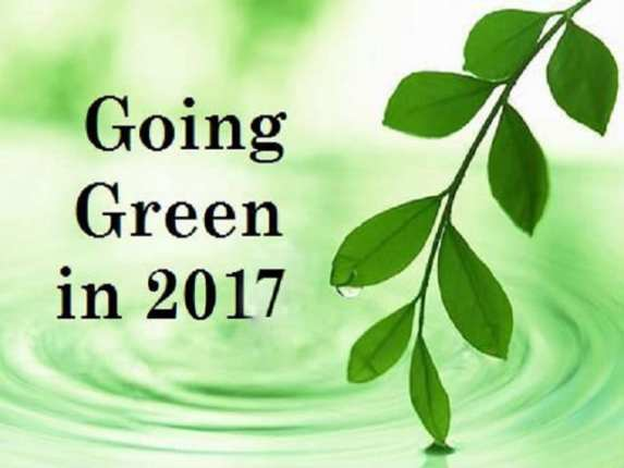 real self sufficiency, going green, green living, simple ways to go green