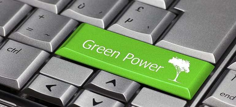 green web hosting review