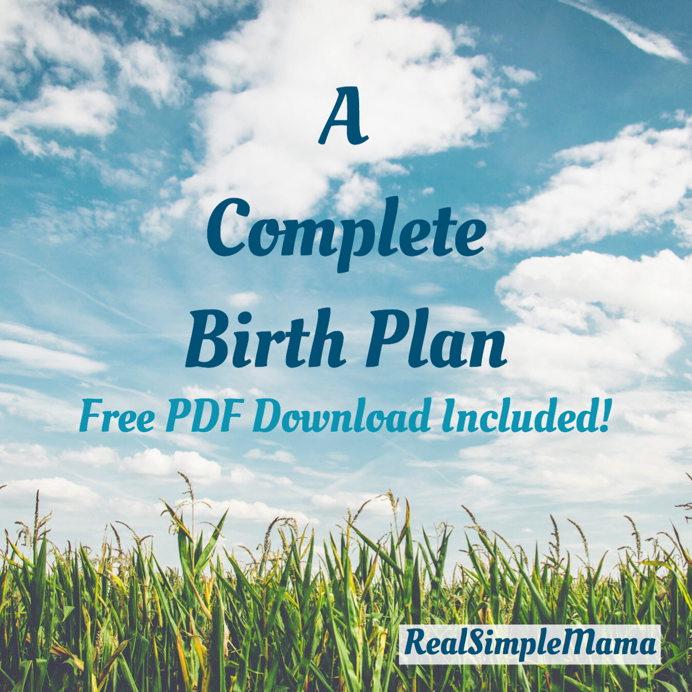 complete birth plan