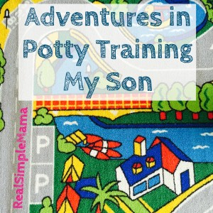 Adventures in Potty Training My Son - Real Simple Mama