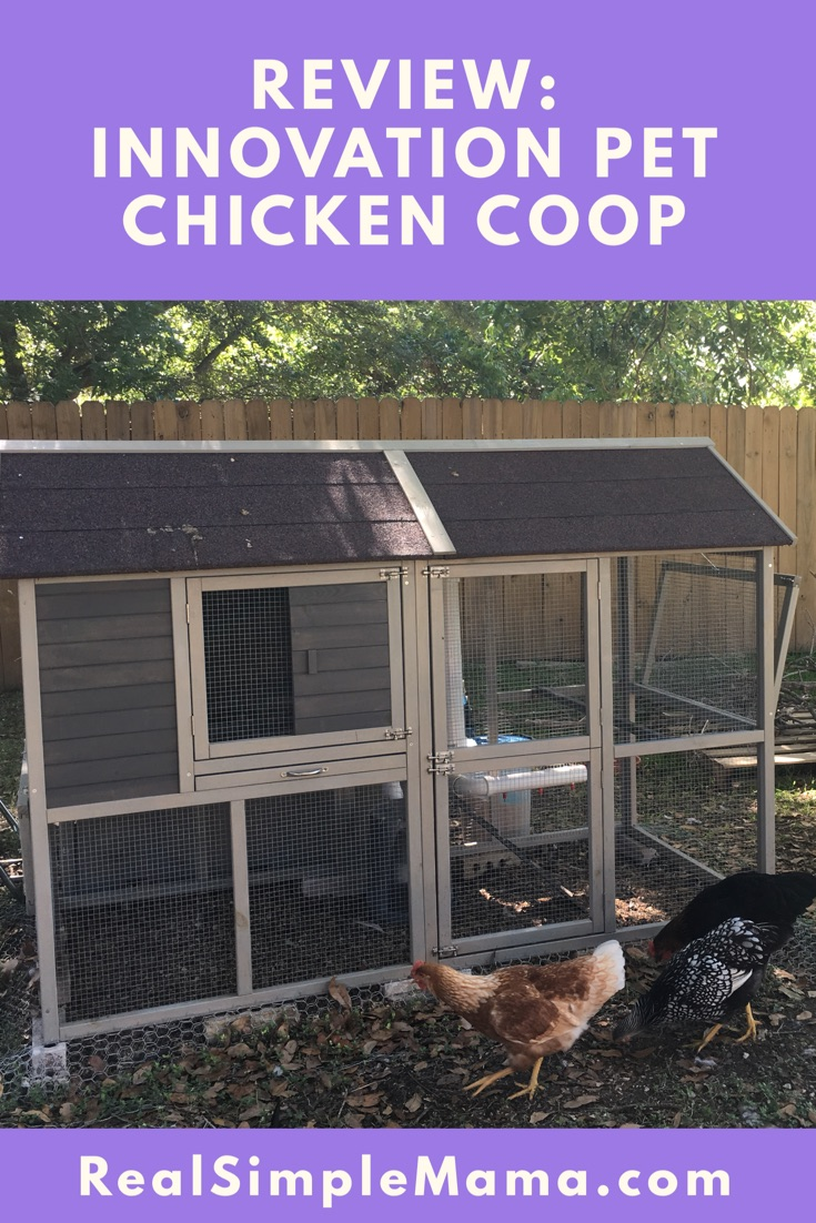 Review: Innovation Pet Deluxe Chicken Coop Kit
