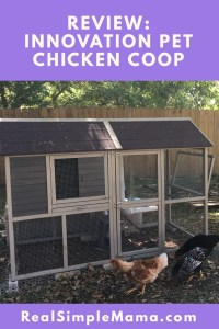 title image backyard Review: Innovation Pet Chicken Coop - Real Simple Mama