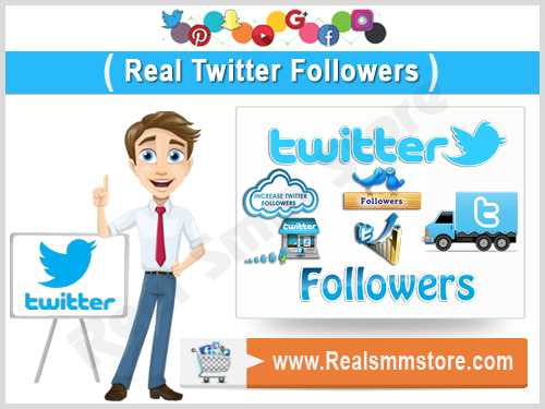 Real Twitter Followers