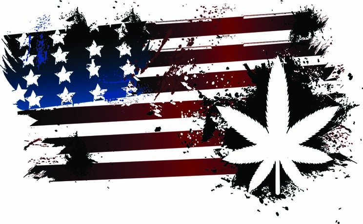 Marijuana Wins Big on Election Night