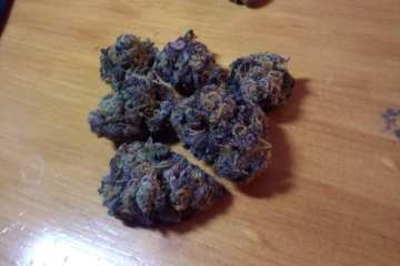Grape Ape Indica