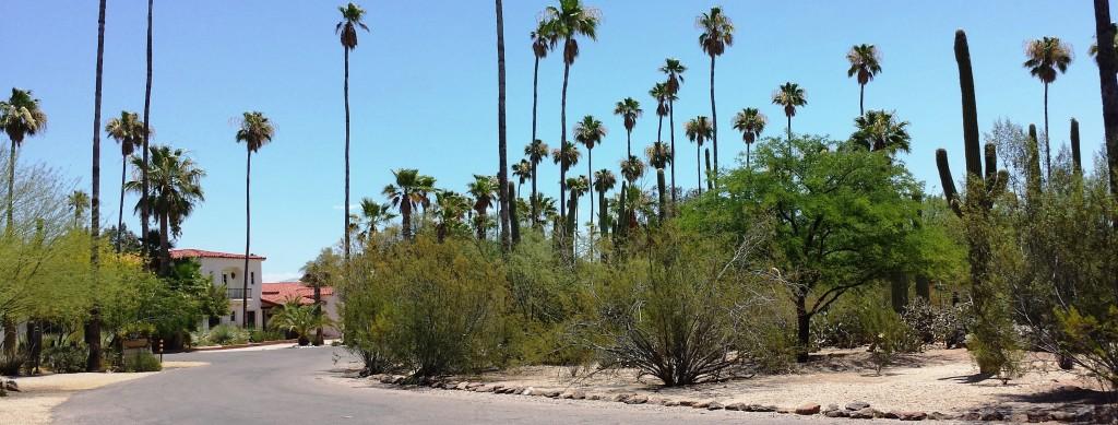El Encanto neighborhood roads