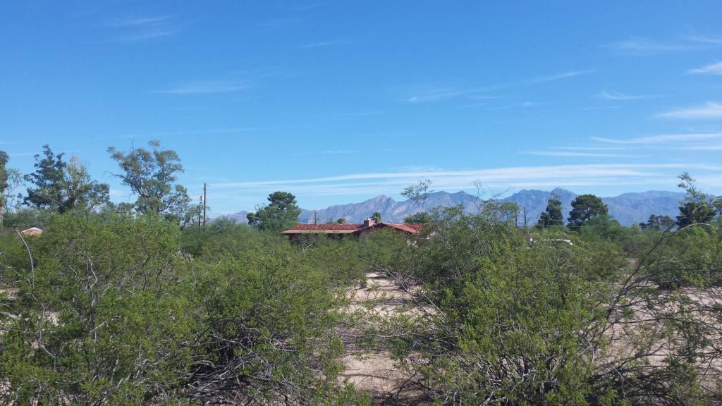 A home with a mountain view in Aldea Linda neighborhood, viewed through the native Creosote shrubs.