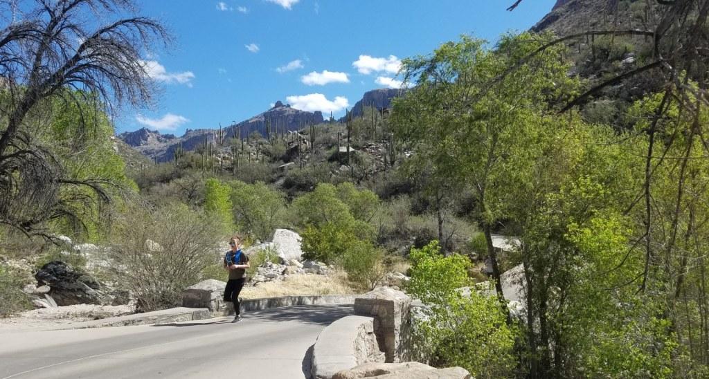 A Runner crossing a bridge at Sabino Canyon