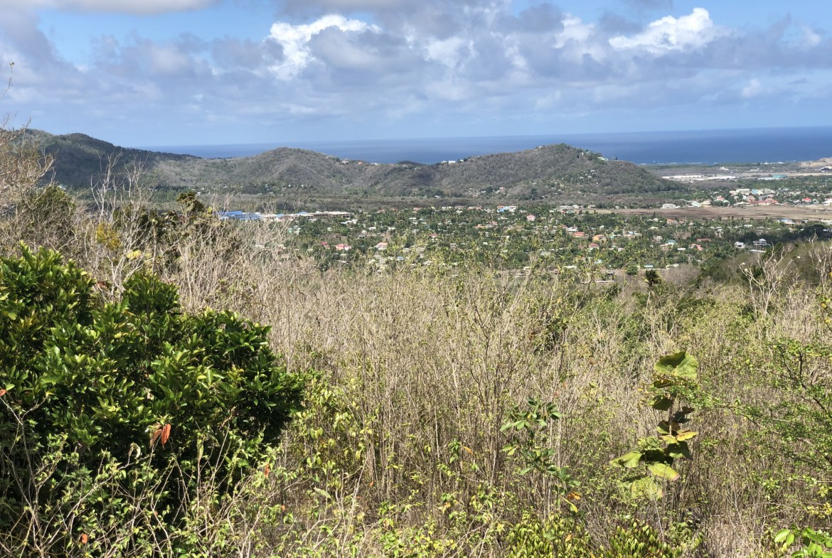 land for sale in laborie view