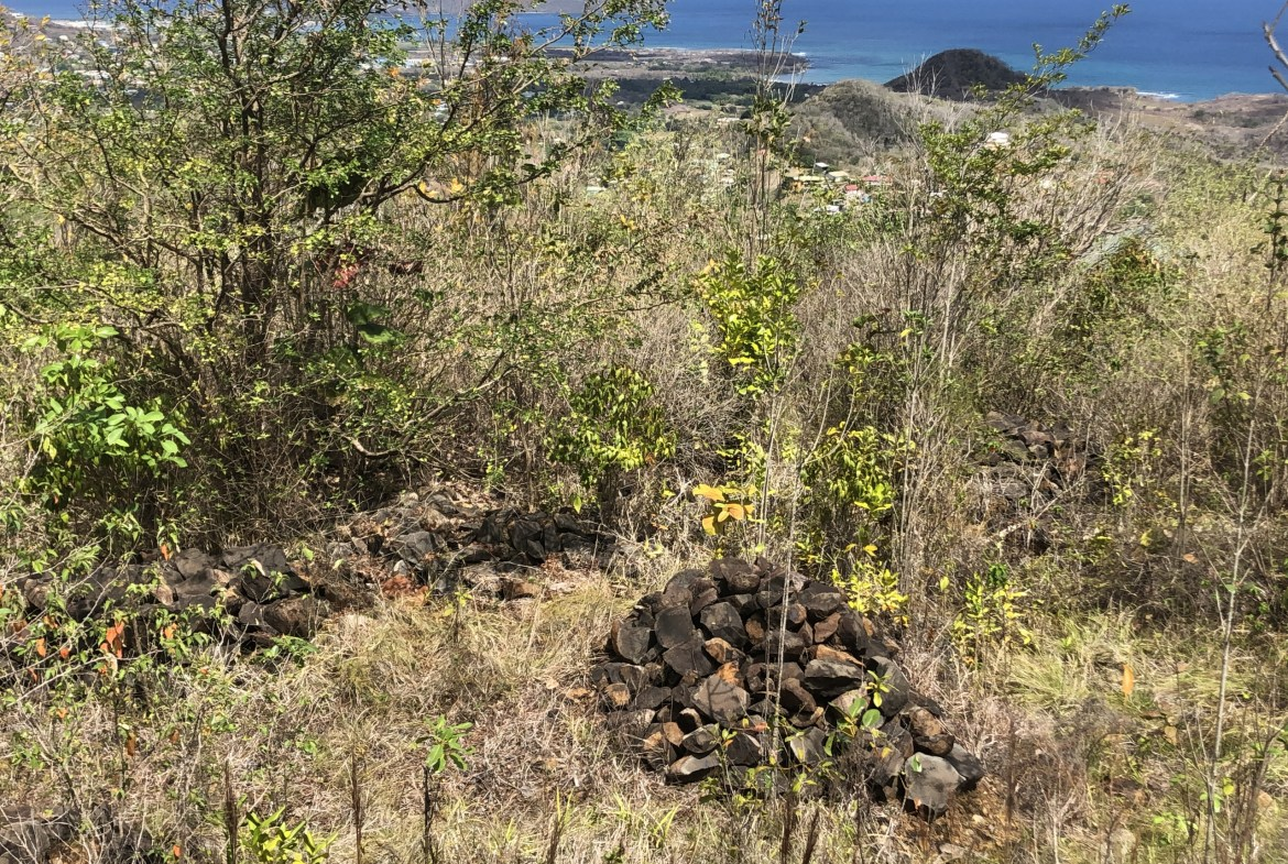 land for sale in laborie 22000 sq ft