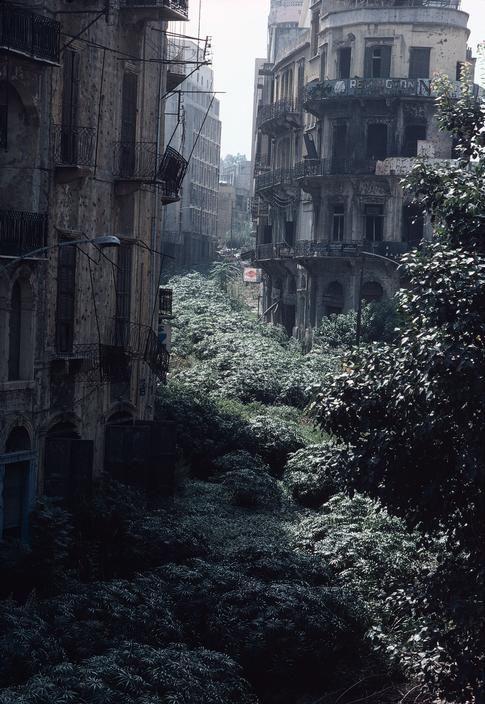 beirut dystopia