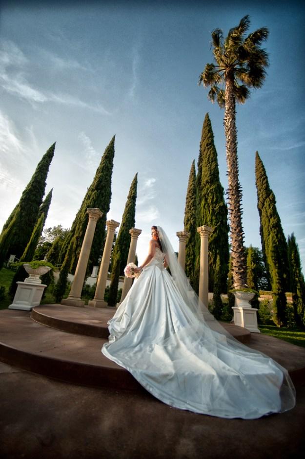 The Shocking Origin of Wedding Traditions