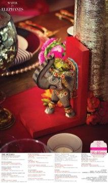 Lexigraphics_PHOTOGRAPHY_Water_for_Elephants-Real-Weddings-Sacramento-Weddings-Inspiration_D-158