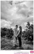 Sacramento_Wedding_Photographer_Real_Weddings_Sacramento_Catherine & Tim-_0027