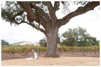 Mariea Rummel Photography | Plymouth Wedding | Vineyard Wedding | Winery Wedding | Outdoor Wedding | Real Wedding