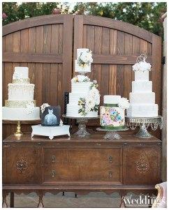 Ty-Pentecost-Photography-Sacramento-Real-Weddings-Inspiration-Something-Sweet-Galt-WM-_0002