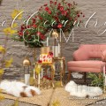 Sacramento Amador County Sutter Creek Wedding Decor Rentals Design
