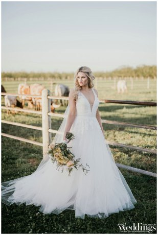 Marysville Wedding | Modern Country Wedding