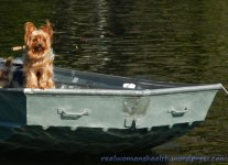 Fisherdog