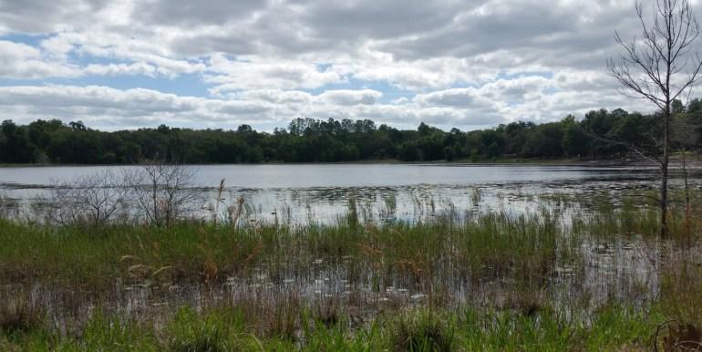 Putnam lan trust lake lyons (Medium) (2)