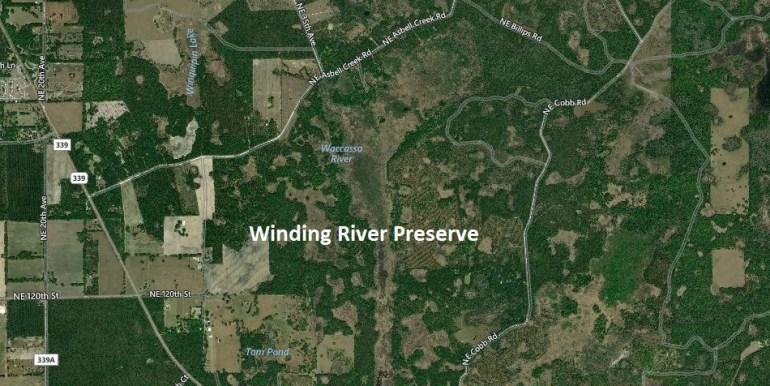 Winding river big map