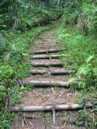 bukittinggi canyon walk