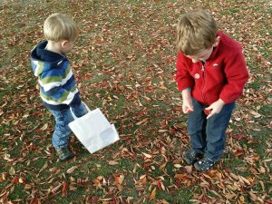 fall crafts with kids | going on a nature walk to collect leaves