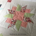 Custom Quilted Sampler | Jen Eskridge | ReannaLily Quilts | Customer Quilt