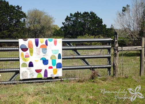 Second SAMQG Block of the Month Quilt | finished by Jen Eskridge ReannaLily Designs