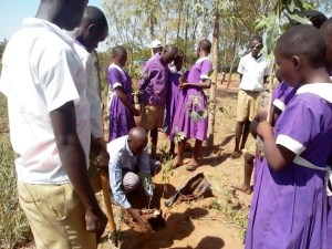 Photo of The Deputy Headmaster planting a tree from Newsletter April 2017