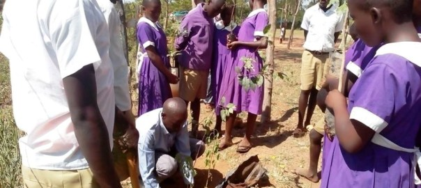Photo of The Deputy Headmaster planting a tree for Tree Planting Ceremony