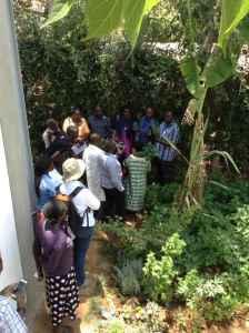 Photo of George teaching on taking Artemisia cuttings