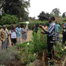 George teaching on harvesting Artemisia and taking cuttings during Natural Medicines seminar May 2018 smll