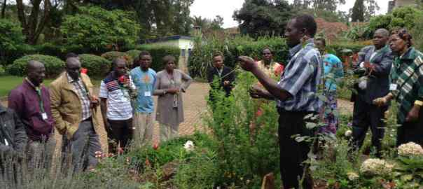 George teaching on harvesting Artemisia and taking cuttings during Natural Medicines seminar May 2018