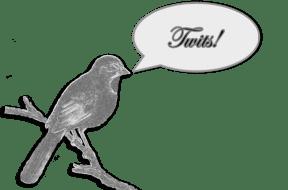 "bird saying ""twit!"""