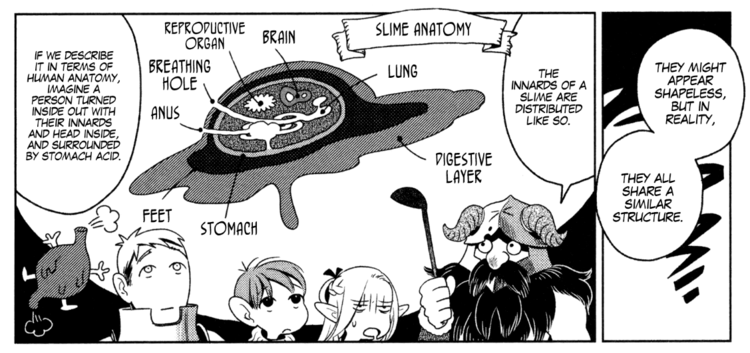 slime anatomy Delicious in Dungeon