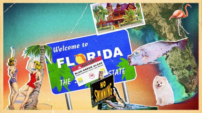 Florida Politics Environment Rebecca Renner