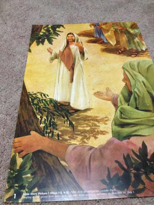 Zacchaeus Bible Story Picture Lifeway Submerged VBS 2016