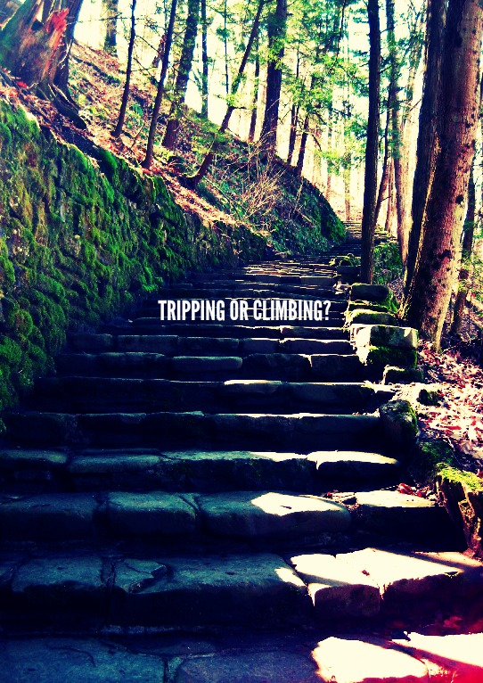 TRIPPING OR CLIMBING