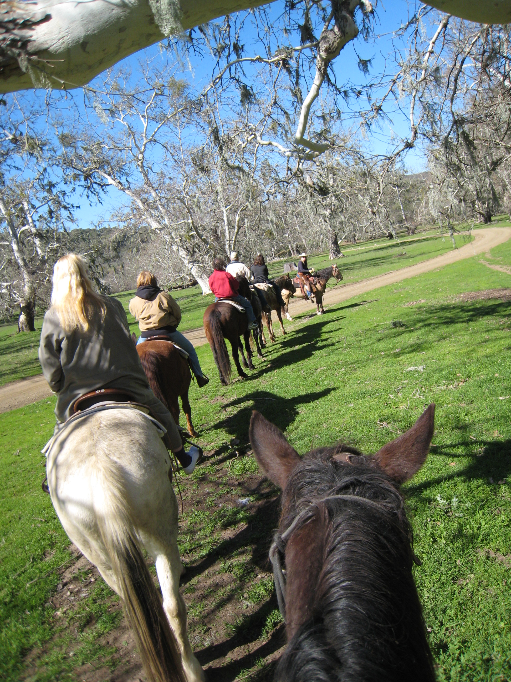 Alisal Trail Ride