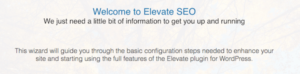 Elevate SEO Installation