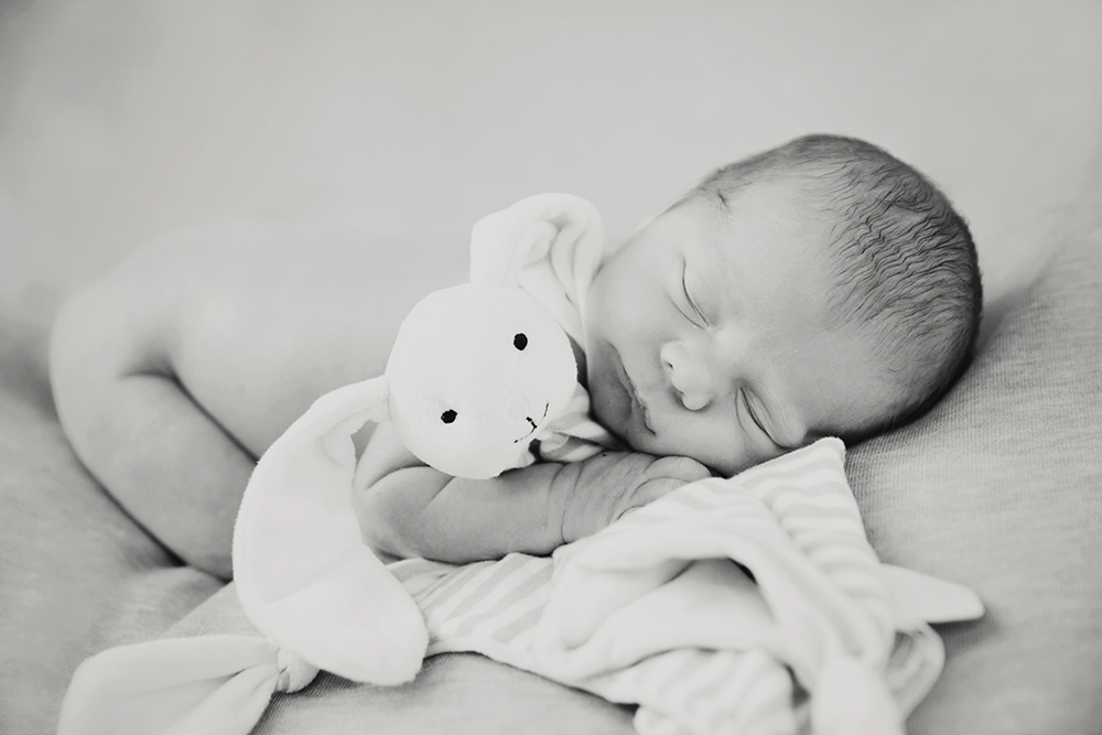 Harry Newborn Photography Sitting