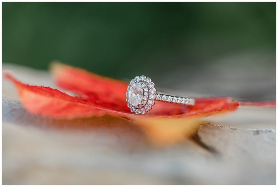 Fall. Engagement ring.