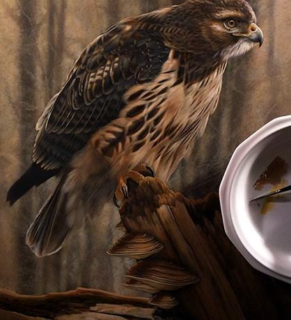 Redtail Hawk Watercolor Painting in Progress - Rebecca Latham