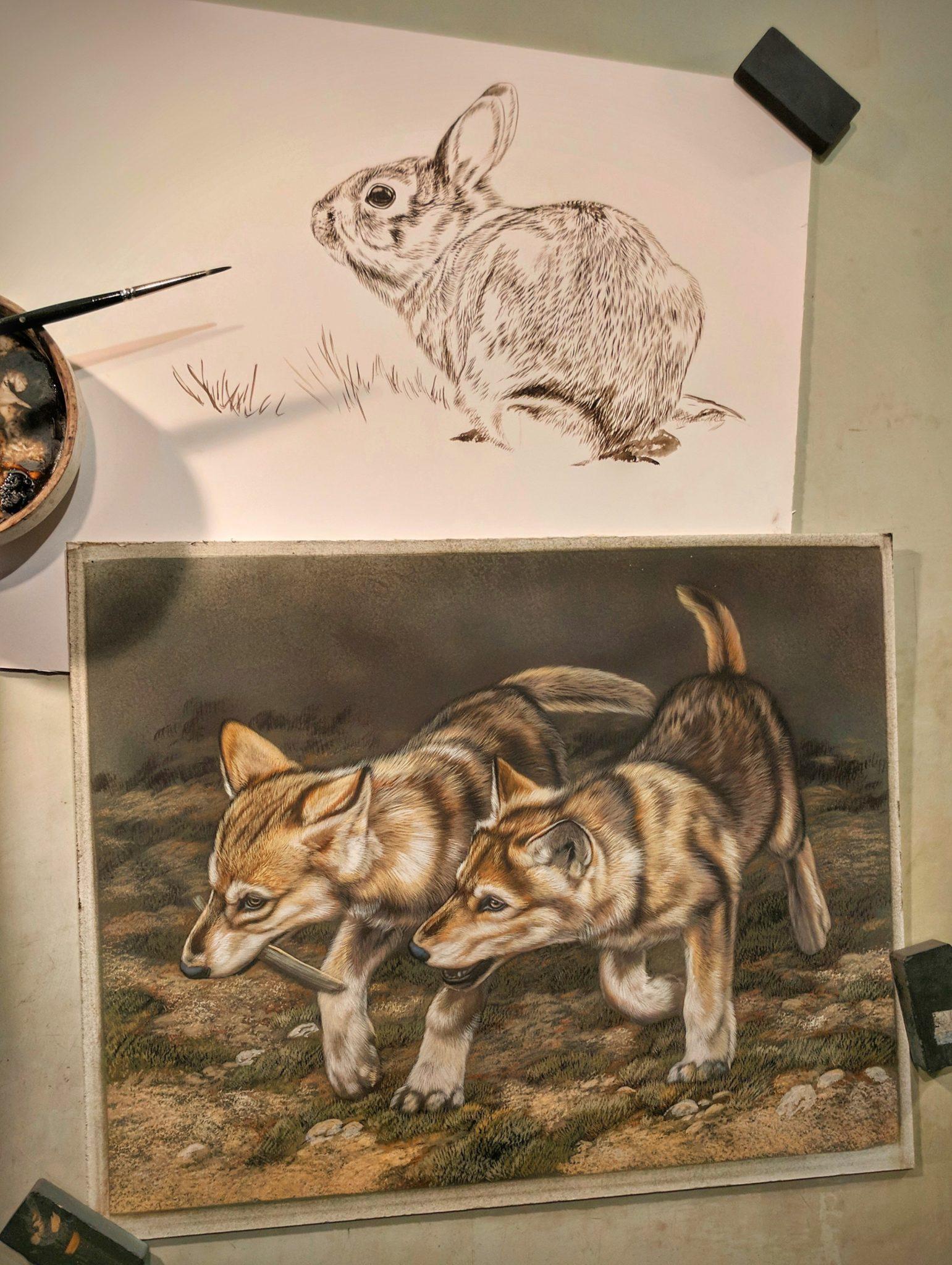 Peek In The Studio – Rabbit and Wolf Pups