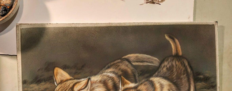 Wolf Pups 9x12, Rabbit 9x12 Sepia, Work in Progress Sepia Watercolor, Rebecca Latham