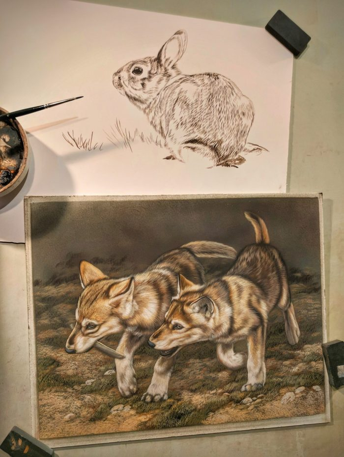Wolf Pups 9x12, Rabbit 9x12 Sepia, Work in Progress Sepia Watercolor, Rebecca Latham